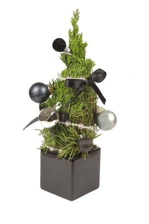 gift tree for chriatmas holiday Stock Photo - 12063712