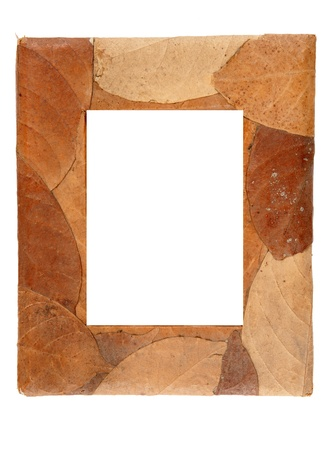 old  wood cover with dry leaf photo frame