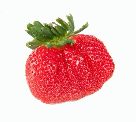New varieties of strawberries Stock Photo - 12080316