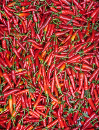 The drying process of the pepper photo