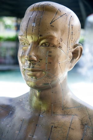 alternative medicine: Chinese facial acupuncture points diagram portrait Stock Photo