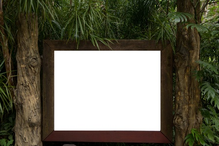 Blank billboard located in forest photo