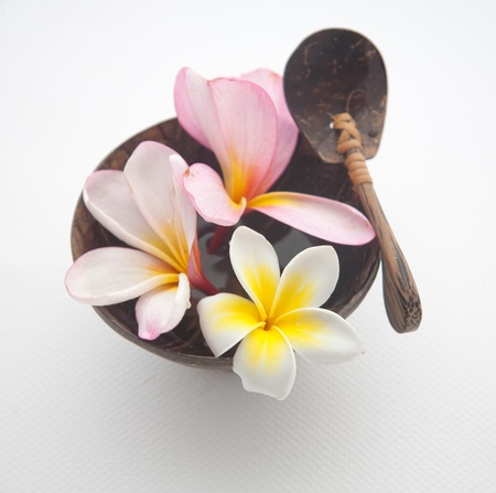 Frangipani Spa Flowers Frangipani concept with bali wood set Stock Photo - 13841089