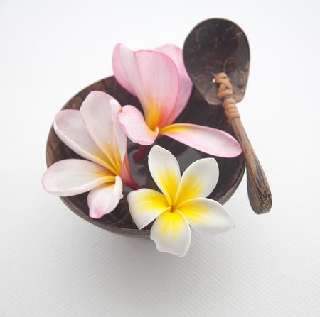 Frangipani Spa Flowers Frangipani concept with bali wood set Stock Photo - 13841089
