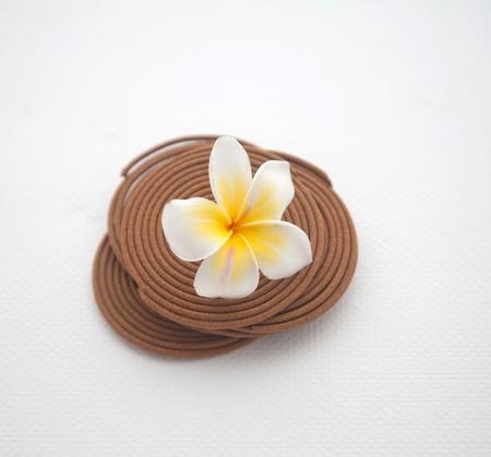Frangipani Spa Flowers/Frangipani concept Stock Photo - 13841097