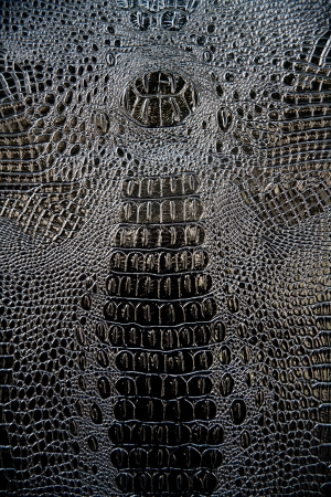 black Crocodile upholstery leather pattern background photo