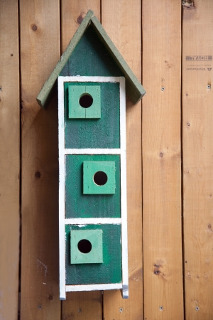bird house on the wood wall photo