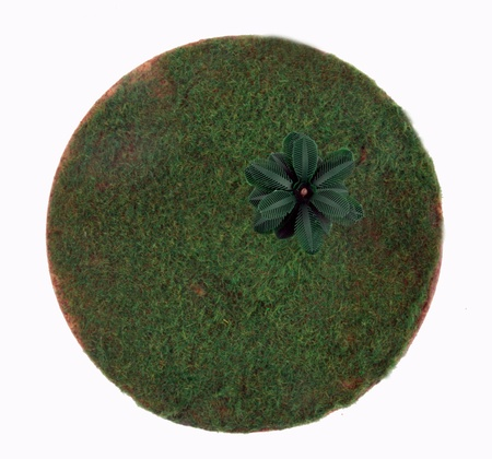 planet with treeGreen grass photo