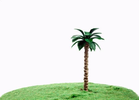 planet with tree/Green grass Stock Photo - 17340716