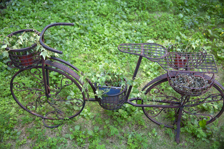 dilapidated: Green grass and dilapidated bicycle Stock Photo