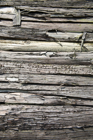 weathered: weathered wood texture