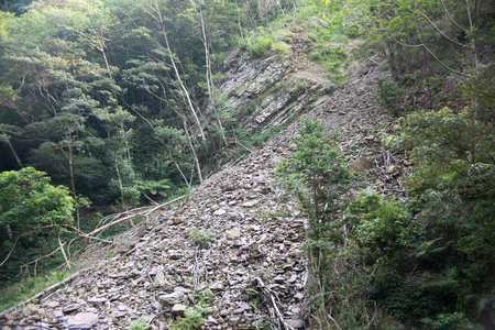 knoll: Landslides in the forest