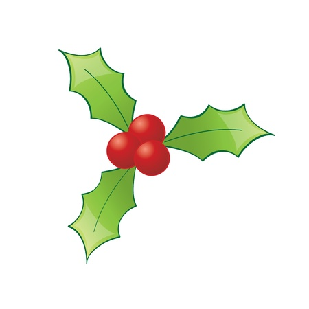 A cheerful and bright christmas holly