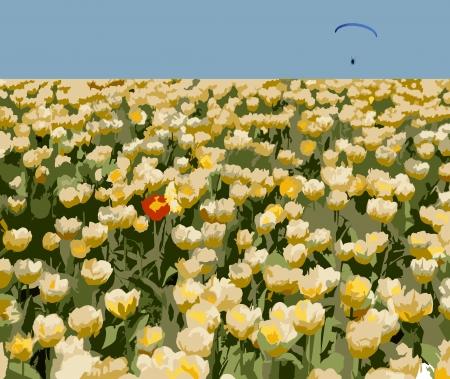 tulipe rouge: Foule tulipes jaunes, une tulipe rouge et parapente illustration