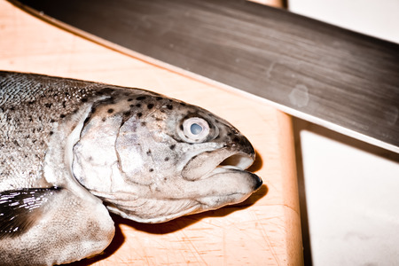 salmonidae: In Polish cuisine, on the Polish table. Trout from family fish Salmonidae. Tasty fishes freshwater fish from South Poland.