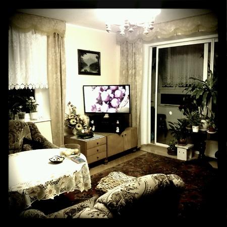 interior: Modern interior living