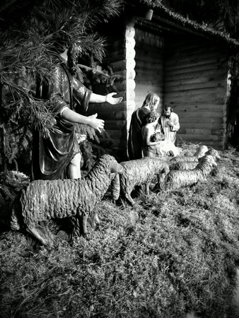 creche: Christmas creche in catholic church.