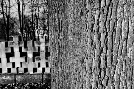 murdered: Cemetery monuments of Zaspa Heroes. Victims of Nazism and World War II. In the cemetery buried the remains murdered Stutthoff, defender of the Polish Post, the border crossing at Szymankowo or Westerplatte, scouts, guerrillas of Pomeranian Griffin.