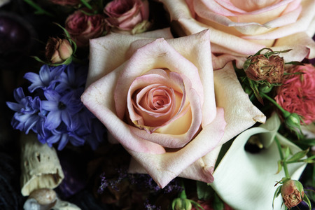 floristic: A beautiful gift floristic with elements of marine life. Stock Photo