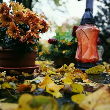 colorfully: Autumn on the Catholic cemetery.