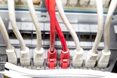 white and red network cables