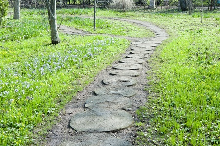 Wooden rings on the path in the garden Stock Photo - 13471427