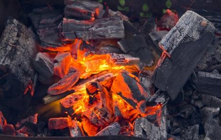 embers: Camp fire and embers