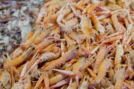 Fresh shrimps at market
