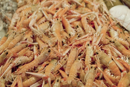 Fresh shrimps at market