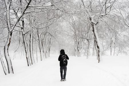 the young guy walks on park during a snow storm