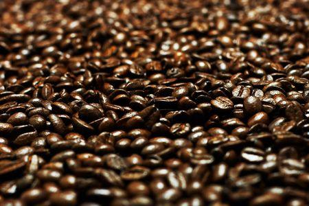 flay: lots of dark coffee grains (Shallow DOF)