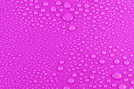 lots of water drops on a pink background photo
