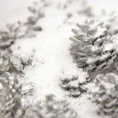 silver pine cones in the white snow (shallow dof) Stock Photo - 5997703