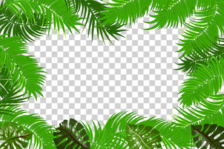 Summer jungle palm leaf frame Ilustração