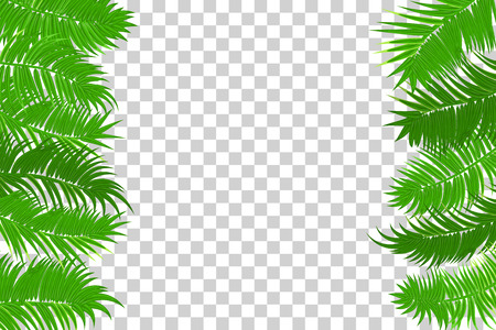 Palm Leaf Template | Web Summer Jungle Frame Banner Green Palm Leaves Template Isolated