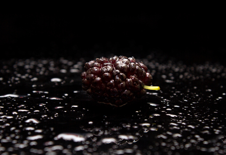 Fresh mulberry. Mulberry close-up.