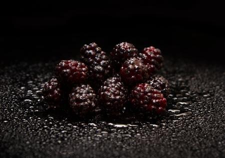 Black background of fresh mulberry. Standard-Bild - 104506713