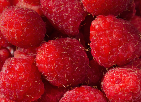 Fresh and sweet red raspberries texture background. Raspberry fruit pile background. Delicious first class raspberries heap background Standard-Bild