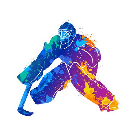 icehockey: player hockey goalie
