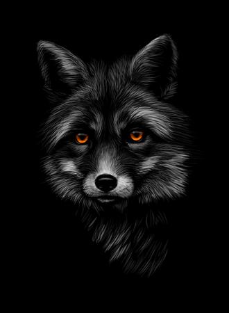 Portrait of a fox head on a black background. Vector illustration Ilustração