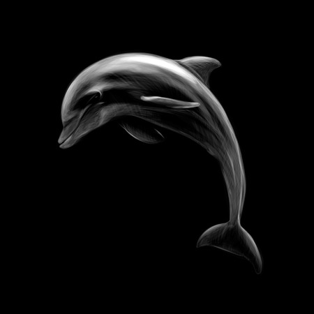 Dolphin on a black background, hand drawn Illustration
