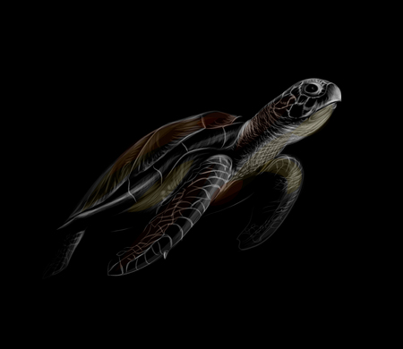 Portrait of a big sea turtle on a black background Foto de archivo - 122573723