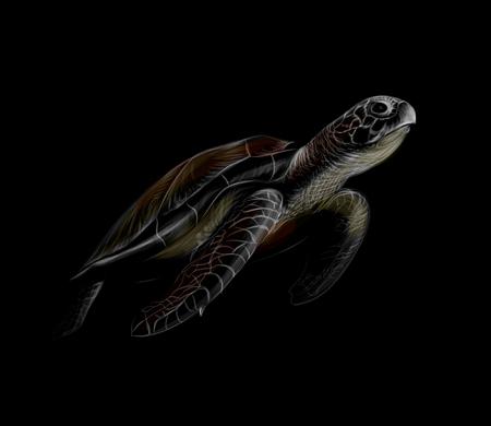 Portrait of a big sea turtle on a black background Illustration