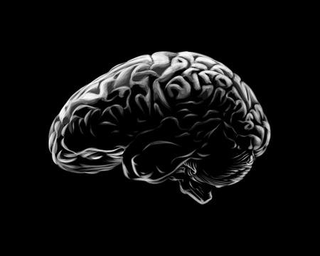 Human brain on a black background. Vector illustration Banco de Imagens - 124117443