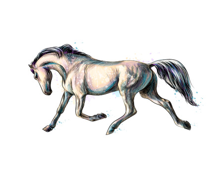 Horse run gallop from splash of watercolors. Hand drawn sketch Ilustração