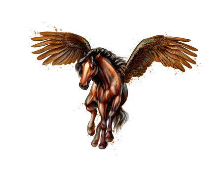 Pegasus mityczny skrzydlaty koń z plam akwareli. Ręcznie rysowane szkic. Ilustracja wektorowa farb