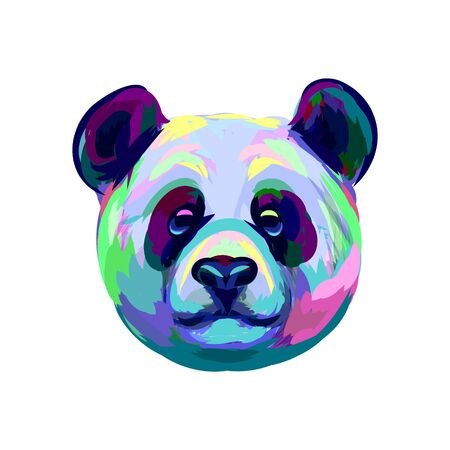 Portrait of a Panda bear head from a splash of watercolor