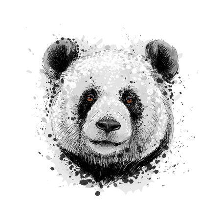 Portrait of a Panda bear from a splash of watercolor