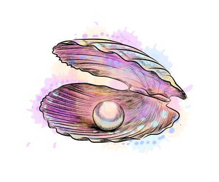 Opened shell with pearl inside from a splash of watercolor Vectores