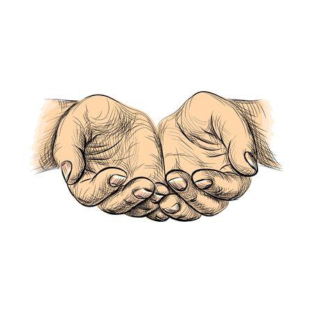 Hands palms together, sketch begging hands on white background Vectores